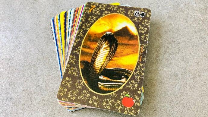 Le Serpent - Carte n°7 - Petit Lenormand (Esmeralda)