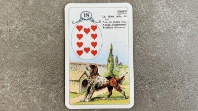 Petit Lenormand - Chien et ses associations de cartes (18)