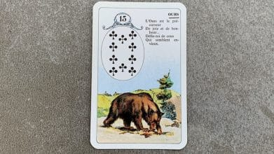 Petit Lenormand - Ours (15)
