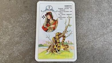 Petit Lenormand - Serpent (7)