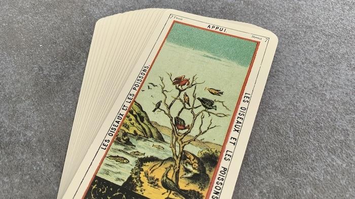 Tarot égyptien - Appui - les Oiseaux et les Poissons (carte droite n°7)