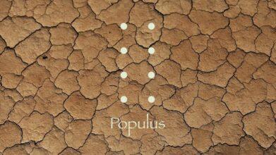 Géomancie - Populus