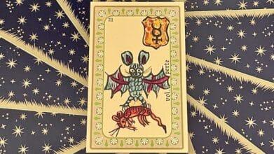 Vol Perte - carte n° 21 - Oracle Belline