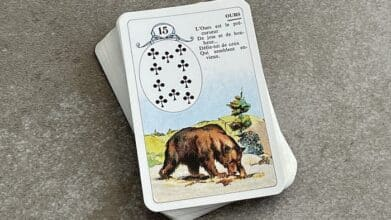 Petit Lenormand Ours 15